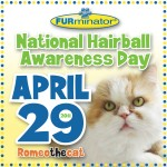 National Hairball Awareness Day, April 29, 2011