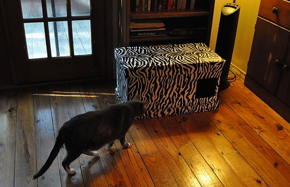 review mouzers amazing litter box cover cattipper. Black Bedroom Furniture Sets. Home Design Ideas