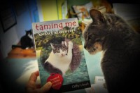 Review: Taming Me (Book)