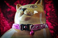 2012 Gift Guide: Pugs2Persians Cat Collars