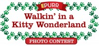 Giveaway: Walkin' in a Kitty Wonderland with Purina!