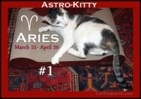 Astro-Kitty: Aries – And A Brawny Cat Giveaway!
