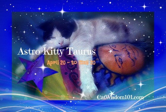 Astro-Kitty: Taurus