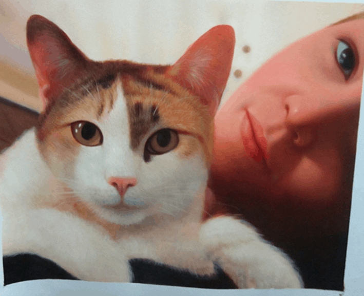 Win a Paintagr.am Portrait of Your Cat!