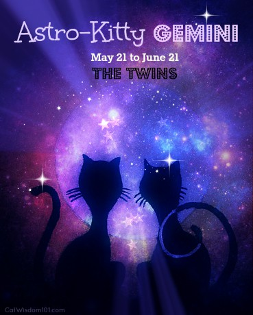 Astro-Kitty: Gemini