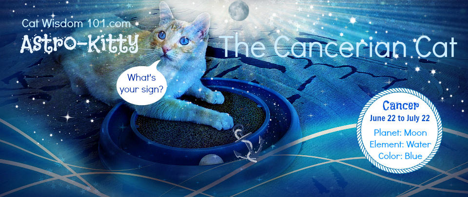 Astro Kitty: The Cancerian Cat