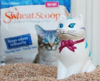 Review: Swheat Scoop Cat Litter