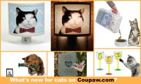 coupaw-whats-new-for-cats