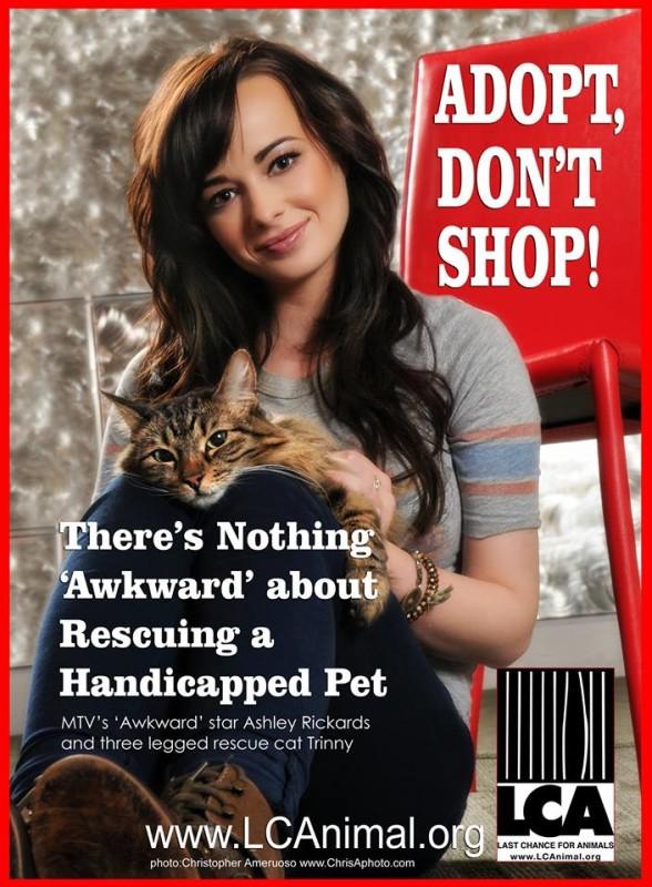 MTV Star Ashley Rickards Promotes Adopt, Don't Shop-CatTipper