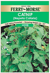 catnip-packet