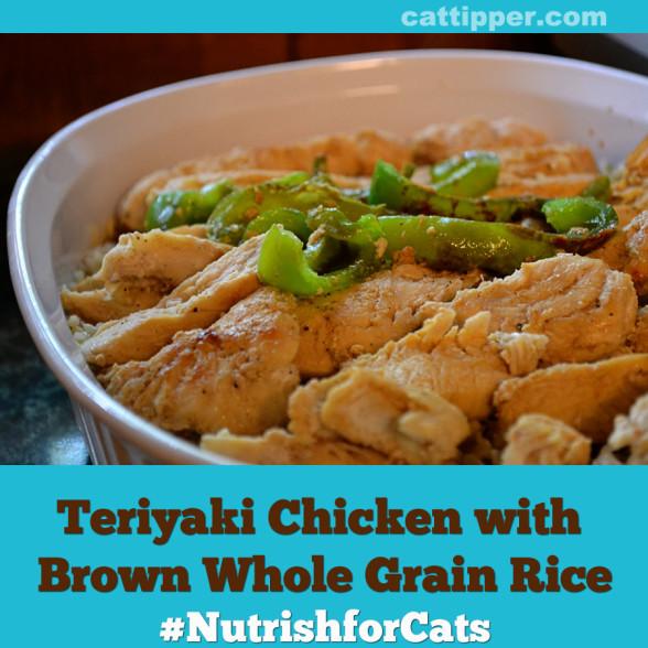 recipe-teriyaki-chicken