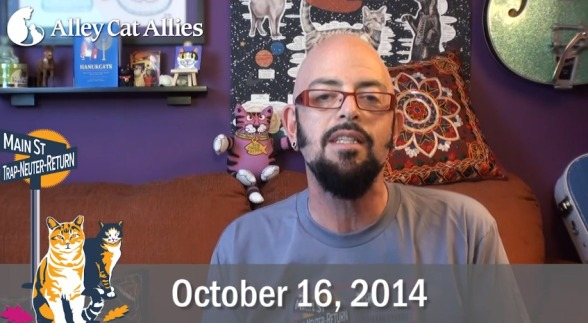 Jackson galaxy promotes national feral cat day cattipper for Jackson galaxy shop