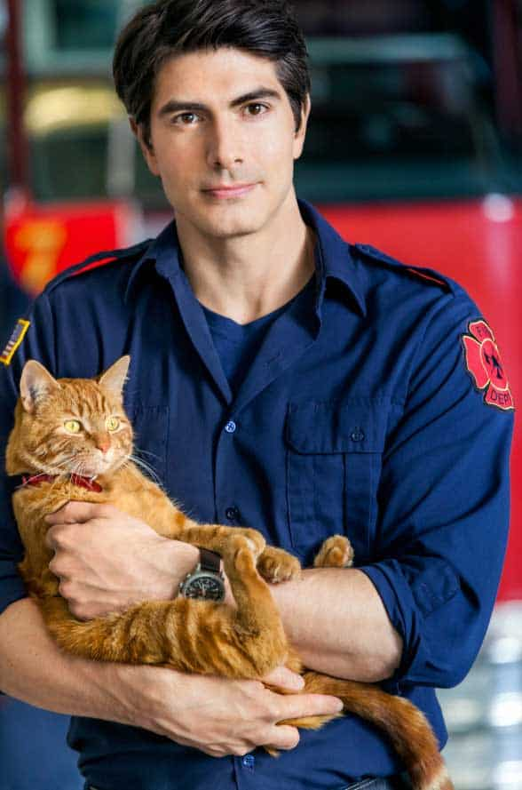 The Hallmark Channel Unleashes The Nine Lives of Christmas ...