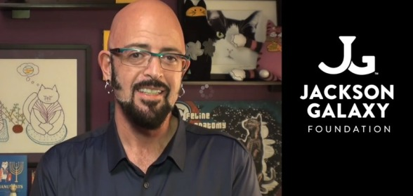 Jackson galaxy foundation launches cat pawsitive for Jackson galaxy shop