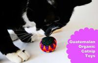 PawZaar's Guatemalan Catnip Catty Sack Toys