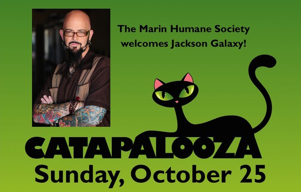 Jackson galaxy to attend catapalooza cattipper for Jackson galaxy music