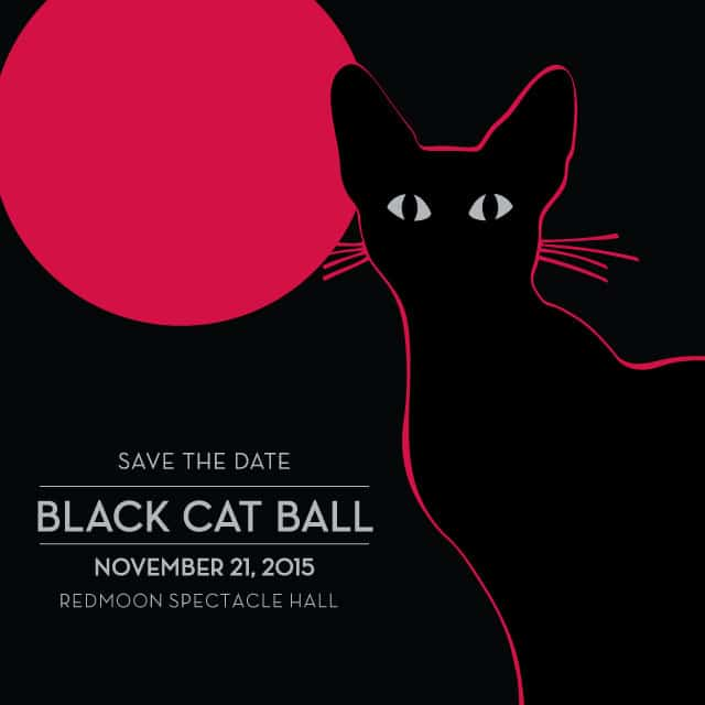 Admirable Black Cat Ball To Help Tree House Humane Society Cattipper Download Free Architecture Designs Scobabritishbridgeorg