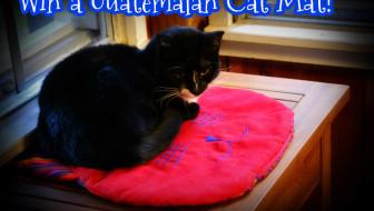 Win a Guatemalan Cat Mat!