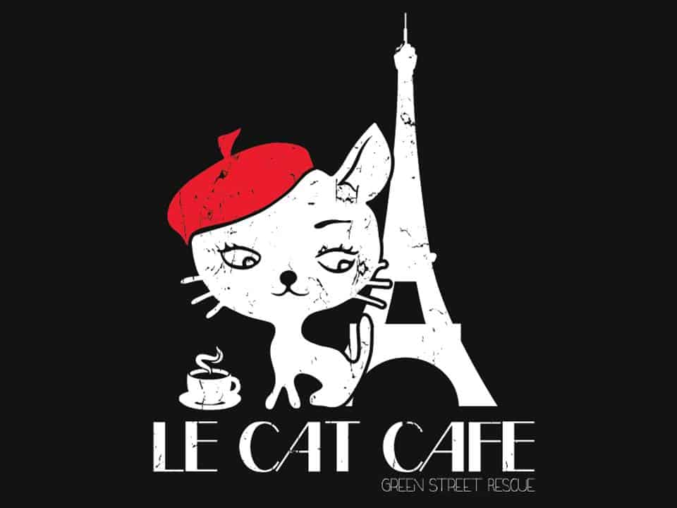 Purr Cat Cafe Grand Opening