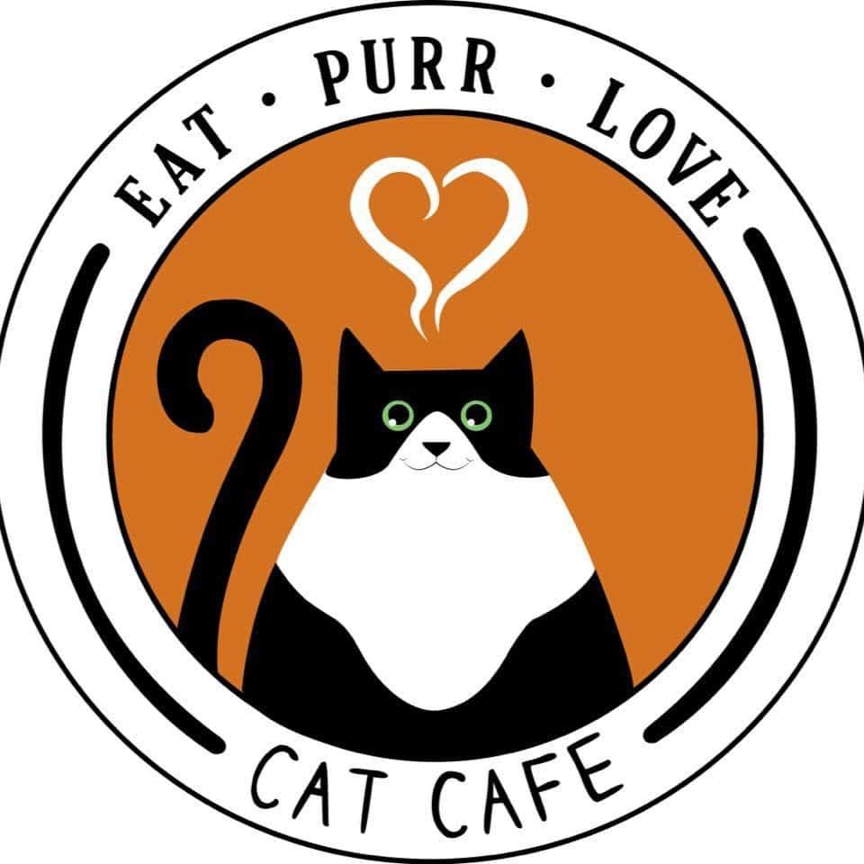 Ohio cat cafe Eat Purr Love
