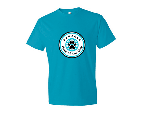 Could Your Cat Be Our Paw of the Day? Win a Paw of the Day Tee (2 winners)