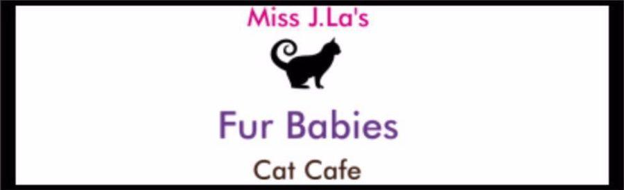 Miss J. La's Cat Cafe