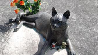 Cat Art: Cat Sculptures in New Zealand