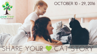 Win $500+ in pawTree Prizes for #NationalCatDay