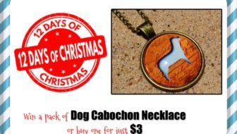 Day 6: Win a Cabochon Necklace (or Buy for $3!) #DealoftheDay