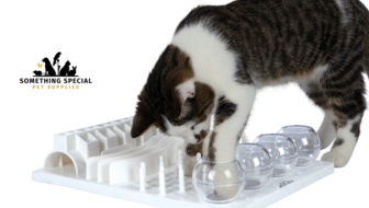 Win a Cat Activity Center from Something Special Pet Supplies!