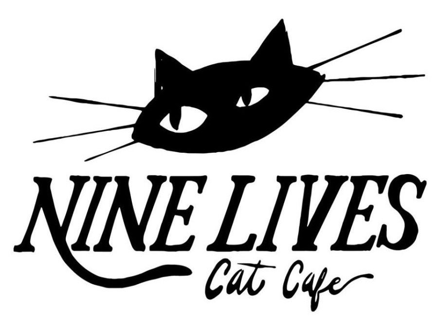 Cats Cafe Indianapolis