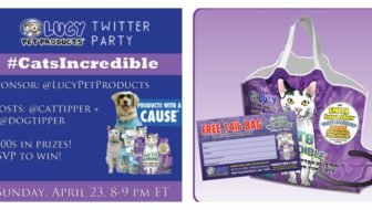 Don't Miss #CatsIncredible + a Special #CouponCode