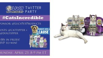 Who Were the #CatsIncredible Winners?