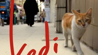 Documentary 'Kedi' Comes to YouTube Red