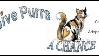 Give Purrs a Chance Cat Cafe Opens in West Virginia