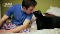'Josh & Scout' Shows Power of the Human/Cat Bond