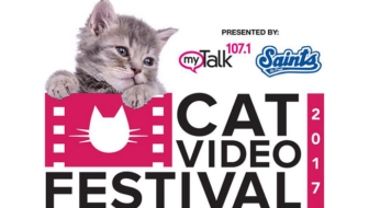 Cat Video Festival Planned for Aug. 8 in St. Paul