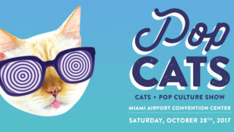 POP Cats Show Comes to Miami
