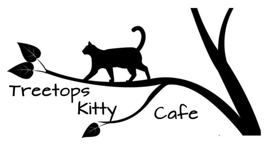 Treetops Cat Cafe Kennett Square