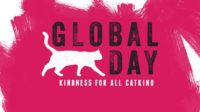 October 16th is Global Cat Day!