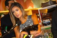 California Passes Landmark Pet Store Law