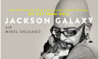 Pounce on Jackson Galaxy's New Total Cat Mojo   #Giveaway