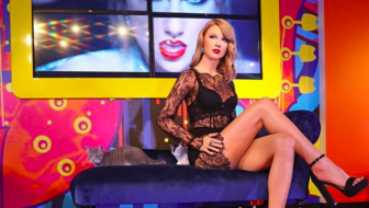 Taylor Swift Wax Figure Helps Adoptable Cats