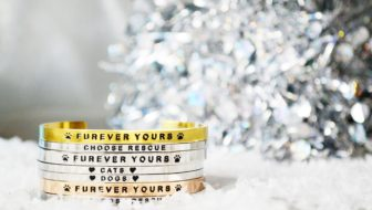 Win a YEAR of Cat-Themed Jewelry (or Dog-Themed) from PawZaar!