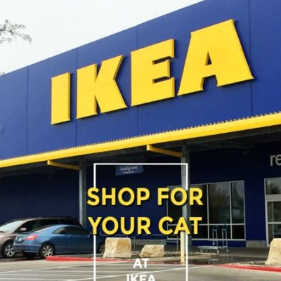 Shop for Your Cat at IKEA